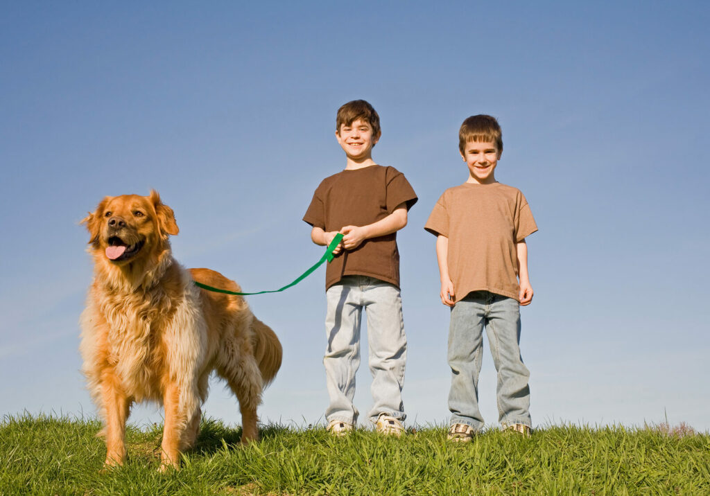 two young boys walking a dog